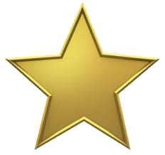 Excellence Star
